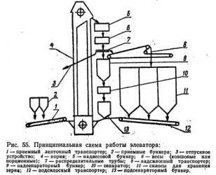 Схема работы элеваторов с зерном привод люлечного элеватора чертеж